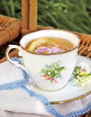 tea-party-tea-rep0507-de