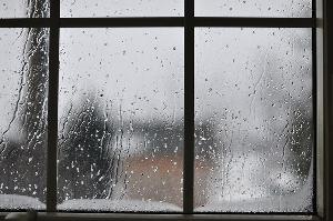 rainy day 1000